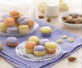 Macarons multicolor
